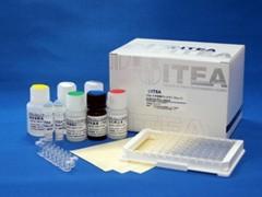 ITEA スギ花粉アレルゲン (Cry j 1)  ELISA キット (抗体固相化済)