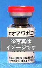 オオアワガエリ花粉抽出物【NEW】